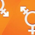transgender vikervaade